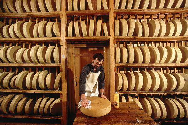 Gruyère cheese factory