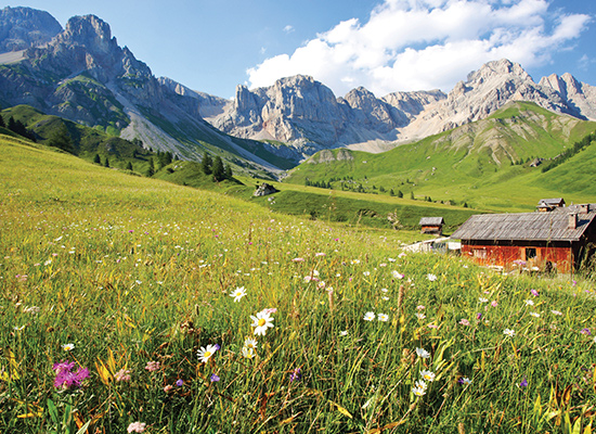 Dolomite mountains and meadows